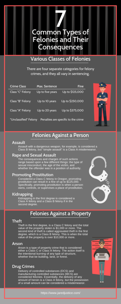 7 Common Types of Felonies and Their Consequences infographic